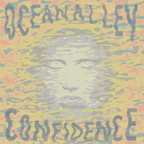 Confidence by Ocean Alley