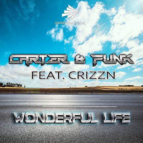 Wonderful Life by Carter & Funk