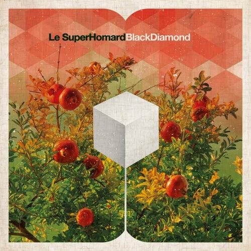 Black Diamond by Le SuperHomard