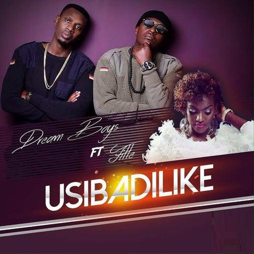 Usibadilike by Dream Boyz