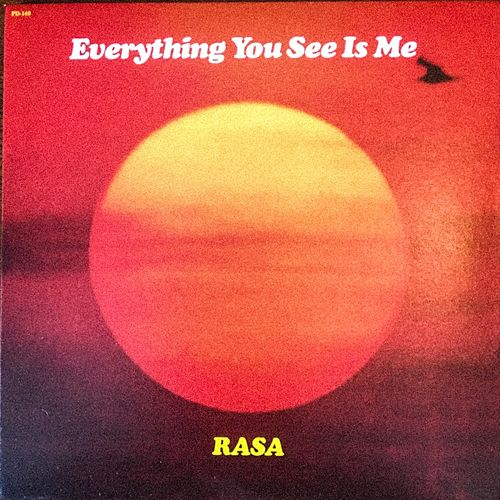 Everything You See Is Me von Rasa