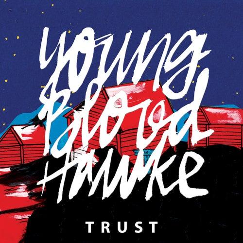 Trust de Youngblood Hawke