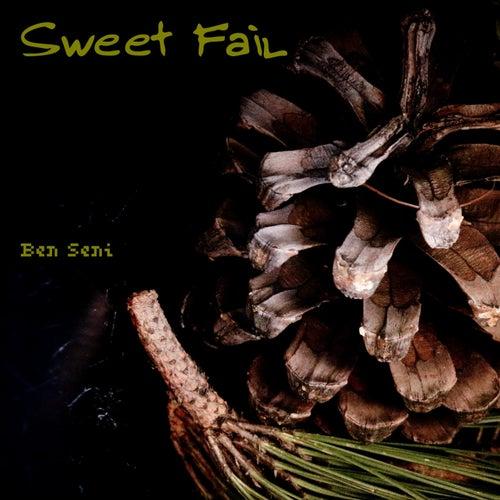 Sweet Fail de Ben Seni