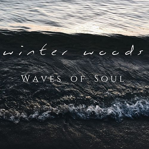 Waves of Soul di Winter Woods