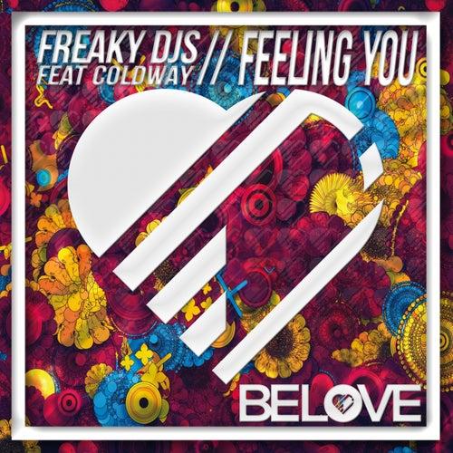Feeling You by Freaky DJ's
