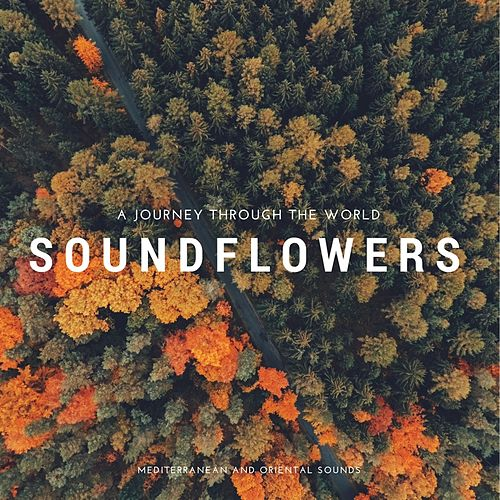 A Journey Through the World di Soundflowers