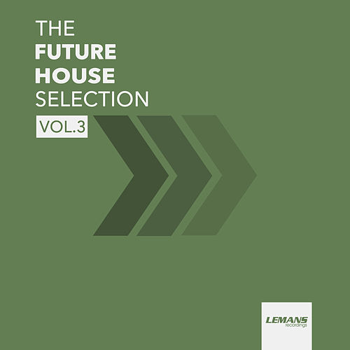 The Future House Selection, Vol. 3 von Various Artists