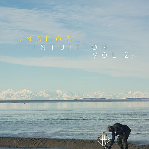 Intuition, Vol.2 by Nsdos