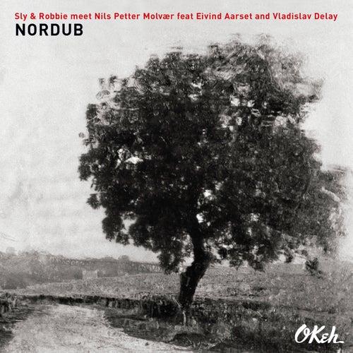 Nordub by Vladislav Delay