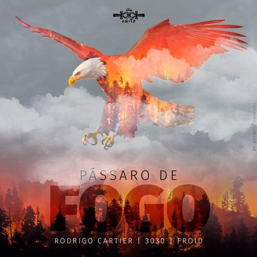Pássaro de Fogo von Rodrigo Cartier