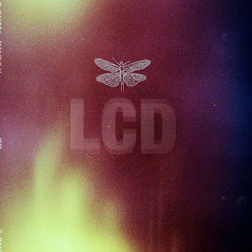 Lcd by Pageant Boys