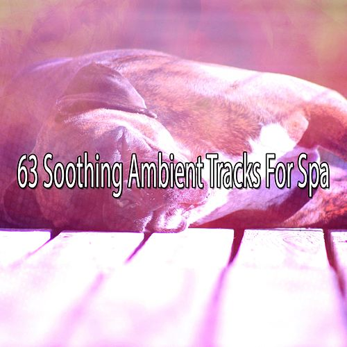 63 Soothing Ambient Tracks For Spa von Best Relaxing SPA Music