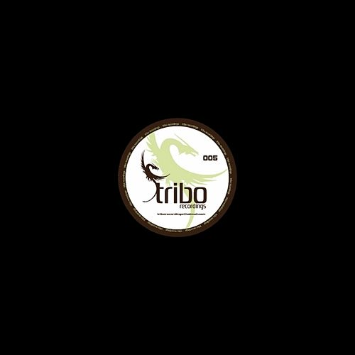 Tribal from Lisboa 'I Believe' von Dj J Fox