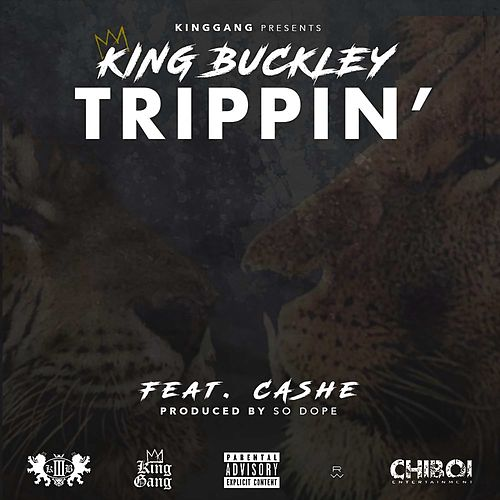 Trippin' (feat. Cashe) de King Buckley