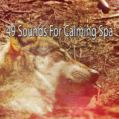 49 Sounds For Calming Spa von Best Relaxing SPA Music