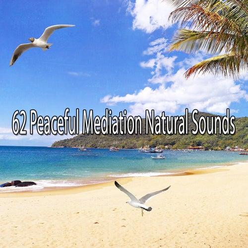 62 Peaceful Mediation Natural Sounds de Massage Tribe