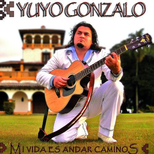 Mi Vida Es Andar Caminos by Yuyo Gonzalo