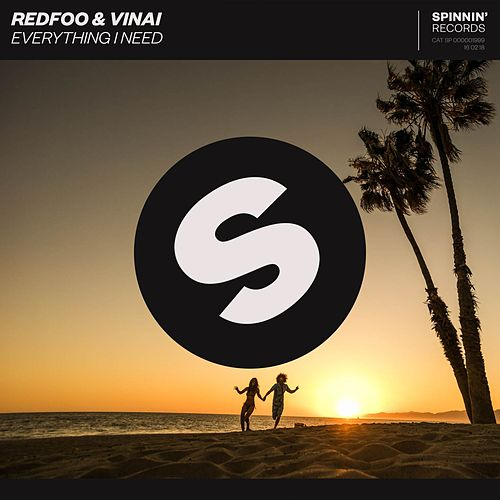 Everything I Need by Vinai