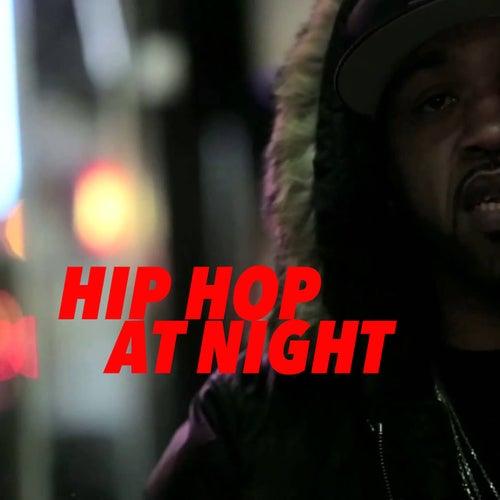 Hip Hop At Night de Various Artists