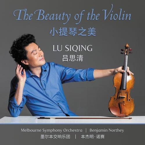 The Beauty Of The Violin de Benjamin Northey