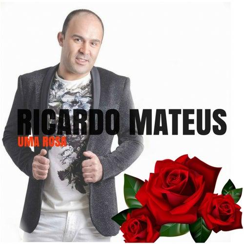 Uma Rosa by Ricardo Mateus