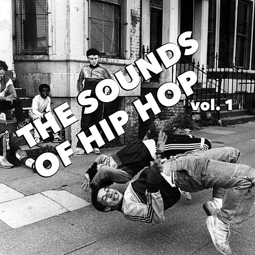 The Sounds Of Hip Hop, vol. 1 de Various Artists
