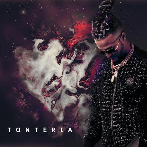 Tonteria by Ovi