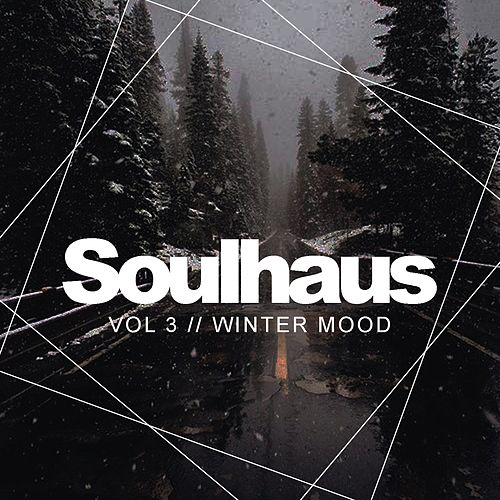 Soulhaus, Vol.3: Winter Mood - EP by Various Artists