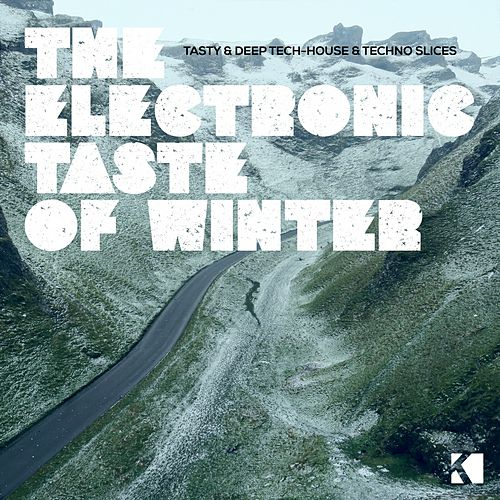 The Electronic Taste of Winter (Tasty & Deep Tech-House & Techno Slices) by Various Artists
