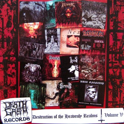 Destruction of the Heavenly Realms, Volume V de Various Artists