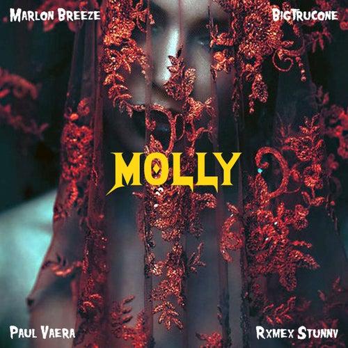 Molly de Nacion Triizy