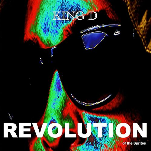 Revolution of the Sprites by King D
