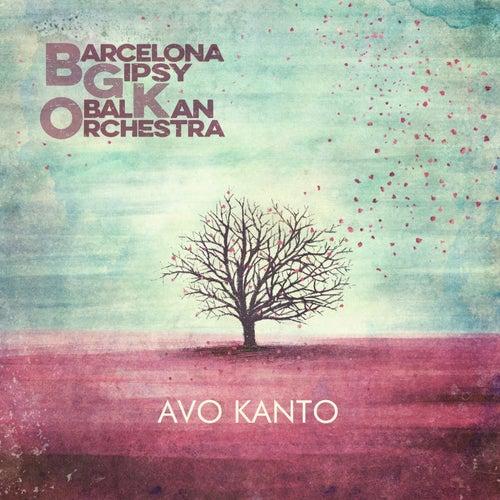 Avo Kanto de Barcelona Gipsy balKan Orchestra