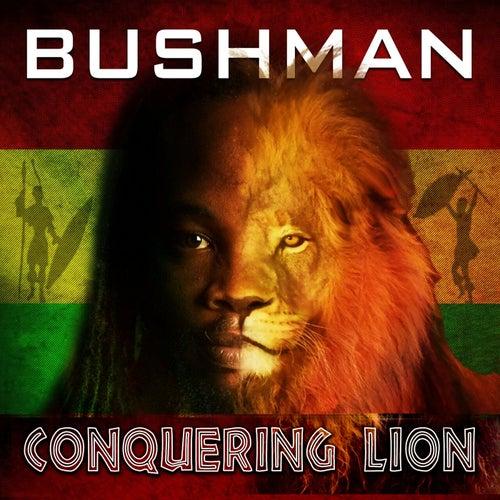 Conquering Lion de Bushman