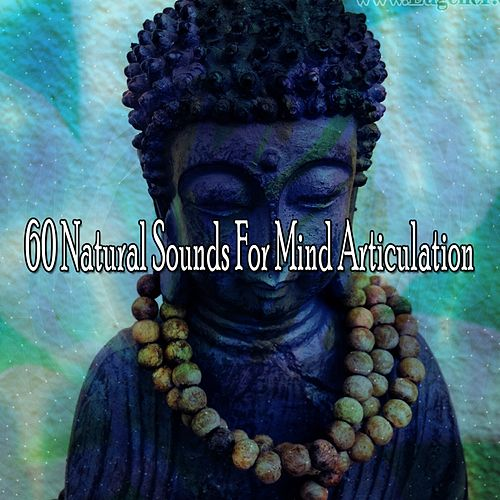 60 Natural Sounds For Mind Articulation de Meditación Música Ambiente
