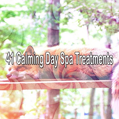 41 Calming Day Spa Treatments von Best Relaxing SPA Music