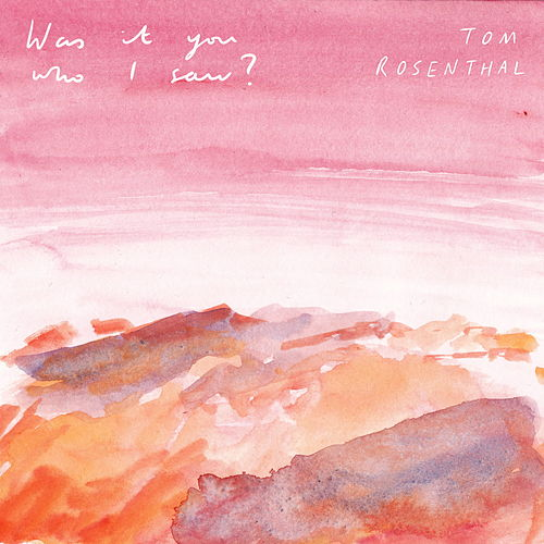 Was It You Who I Saw? von Tom Rosenthal