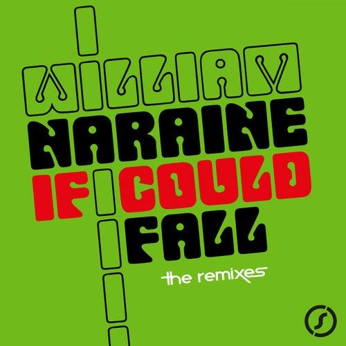 If I Could Fall de William Naraine