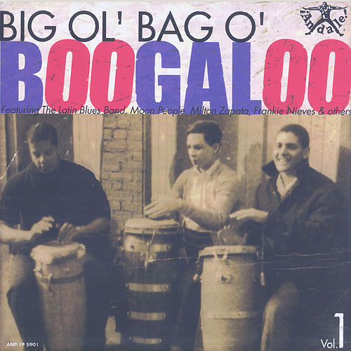 Big Ol' Bag o' Boogaloo, Vol. 1 by Various Artists