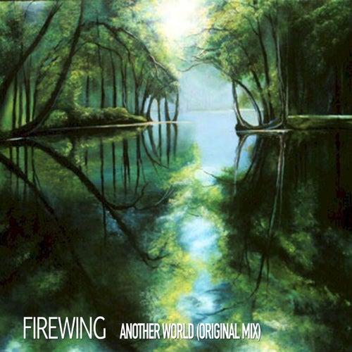 Another World (Original Mix) by FireWing