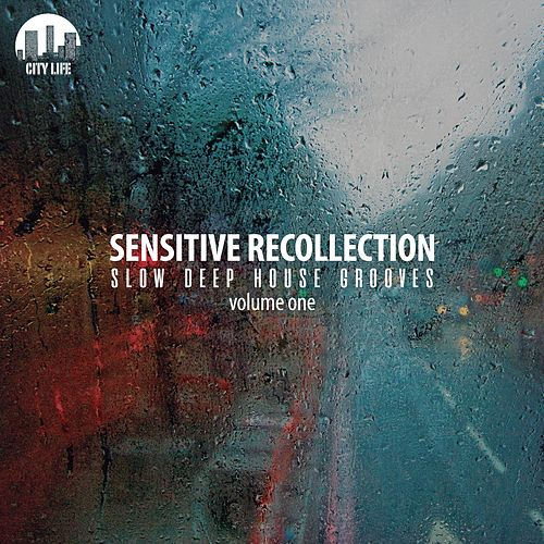 Sensitive Recollection, Vol. 1 - Slow Deep House Grooves de Various Artists