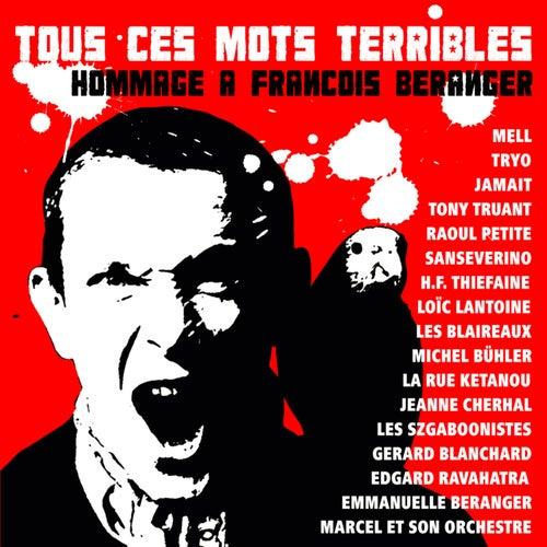 Tous ces mots terribles (Hommage à François Béranger) von Various Artists