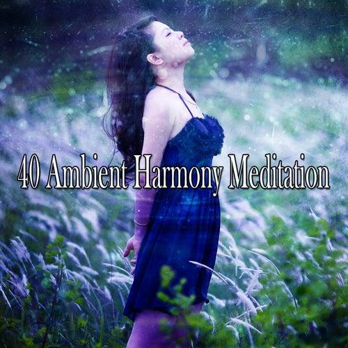 40 Ambient Harmony Meditation de Meditación Música Ambiente