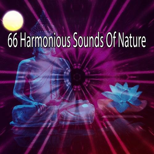 66 Harmonious Sounds Of Nature de Massage Tribe