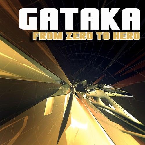 From Zero to Hero by Gataka