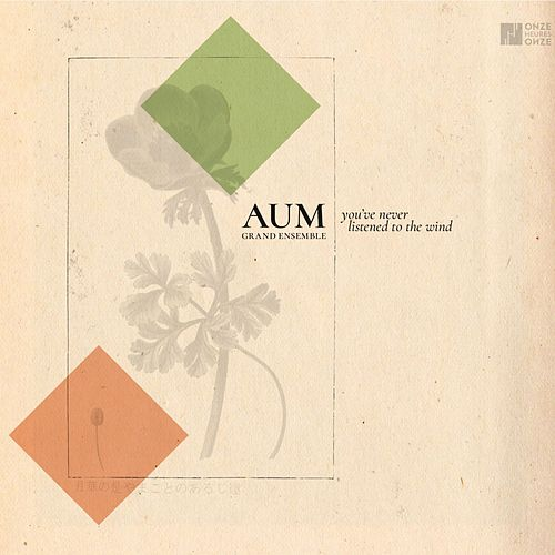 You've Never Listened to the Wind by AUM Grand ensemble