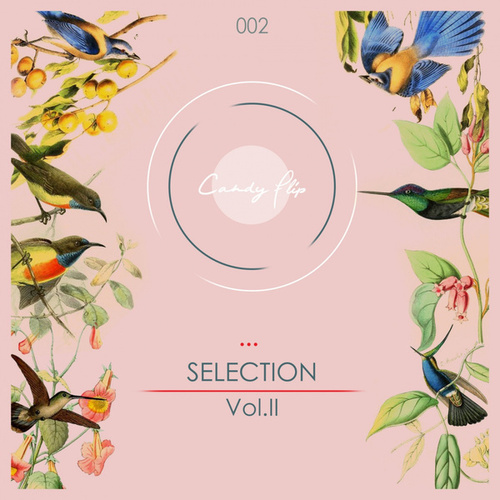 Candy Flip Presents Selection Vol.2 de Various Artists