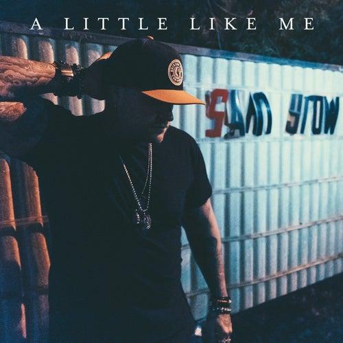 A Little Like Me by Sam Grow
