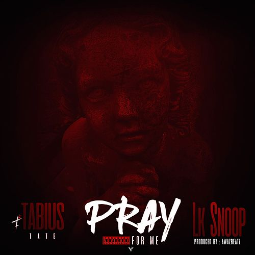 Pray for Me (feat. Luccie Fontane) von Lk Snoop