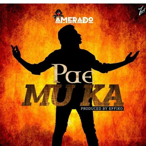 Pae Mu Ka by Amerado